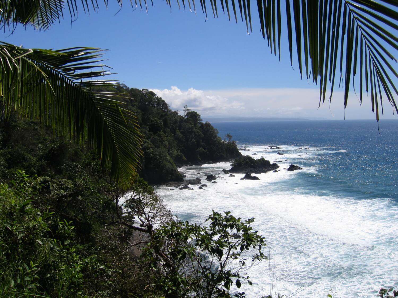 Île du Caño, plongée au Costa Rica
