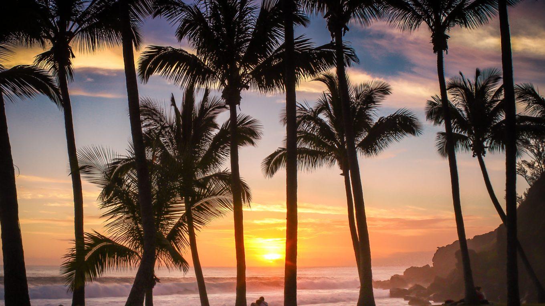 Plage de Grande-Anse, se baigner à la Réunion