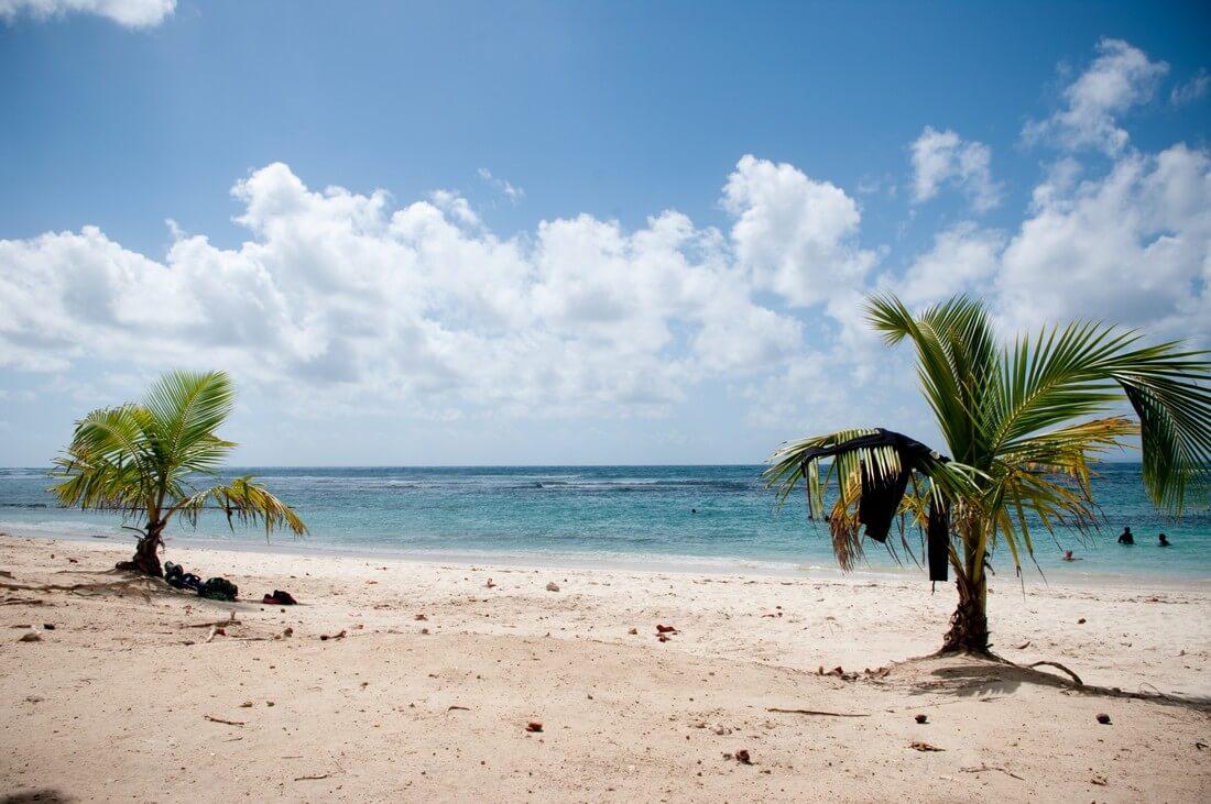 plage des raisins clairs plus belles plages de guadeloupe
