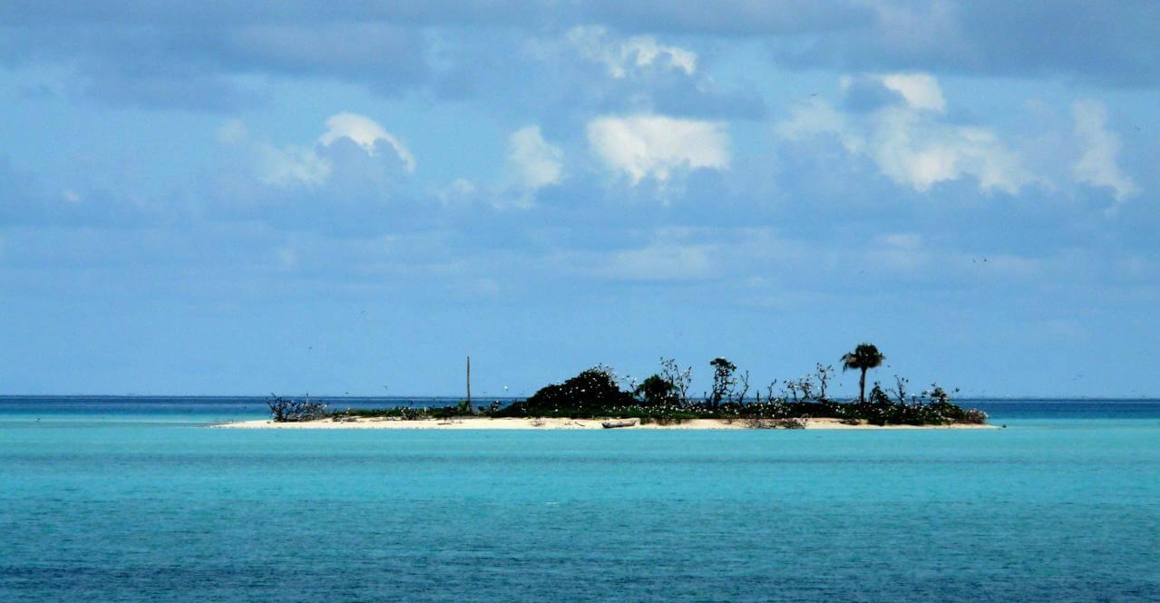 Tubbataha Reef plongée aux philippines