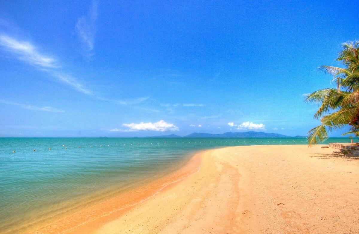 mae nam beach plage soleil palmiers mer turquoise sable doré plages de koh samui