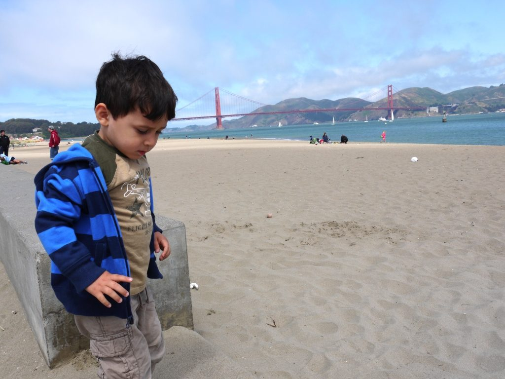Crissy Field, figurant sur la liste des meilleurs de San Francisco plage, est une des meilleures plages familiales des environs.