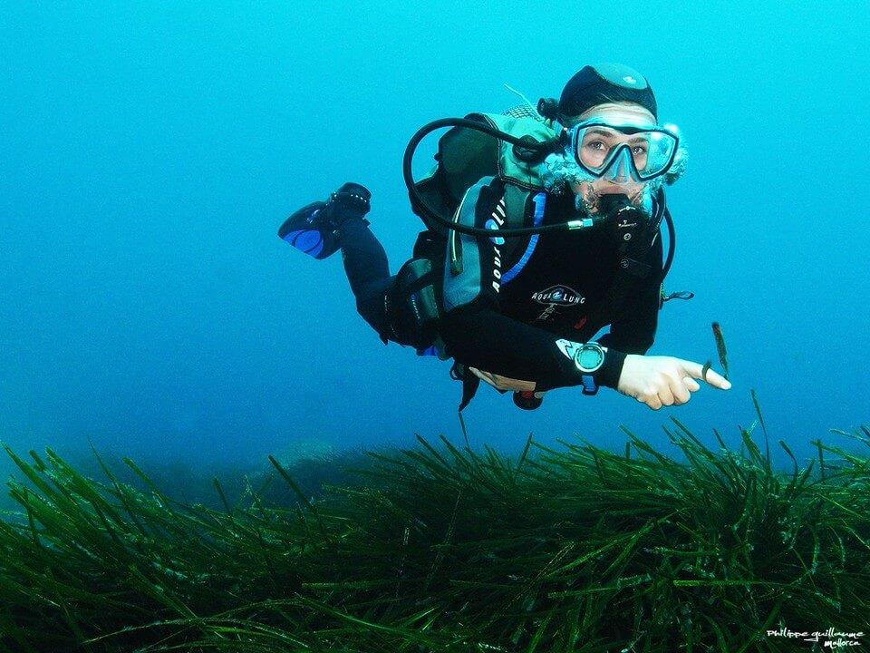 femme plongée algues plongée à Majorque