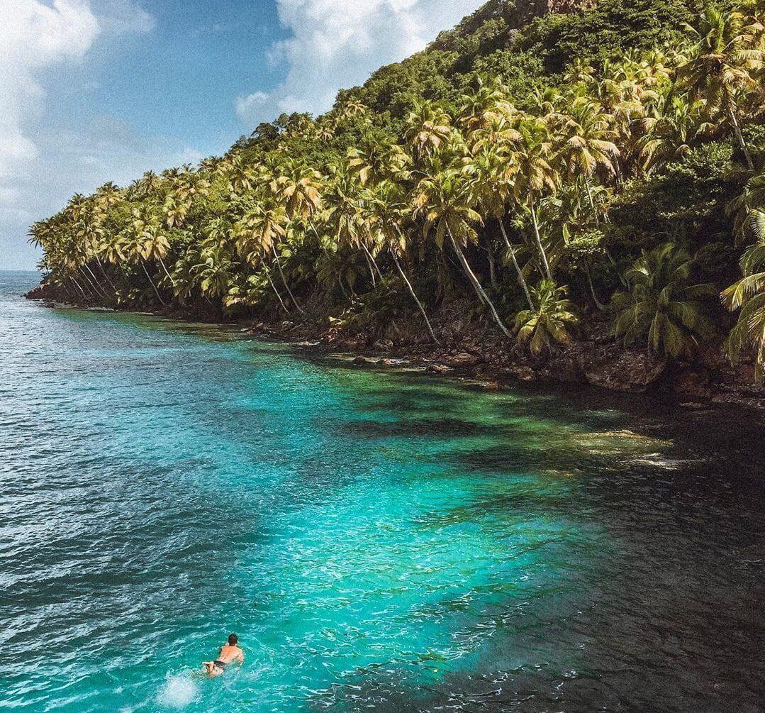 palmiers ile turquoise providencia
