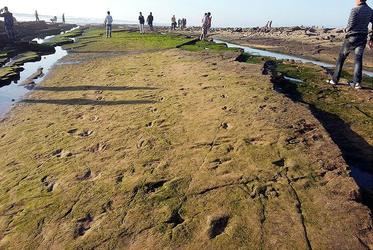 plage d'anza traces plages d'agadir