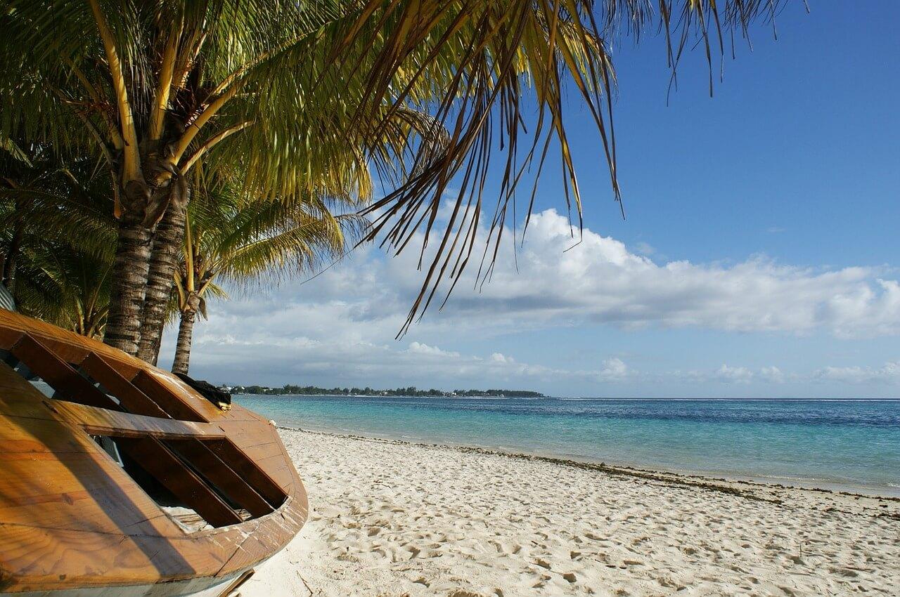 plage palmier plongée à l'île Maurice