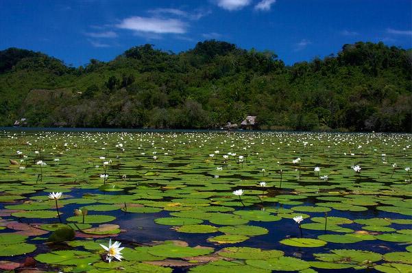 Guatemala temp rature de l 39 eau de la mer aujourd 39 hui for Piscine ouverte aujourd hui