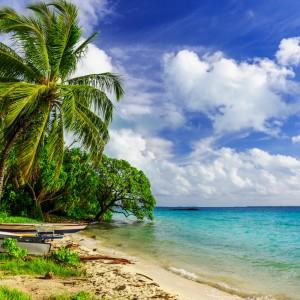 Autres îles du Pacifique-Sud