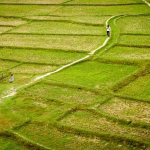 Le Bangladesh